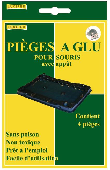 http://www.radicalle.com/Files/22012/Img/12/piege-a-glu-souris-2-zoom.jpg